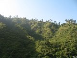 Lush Hills of the Henwalghati