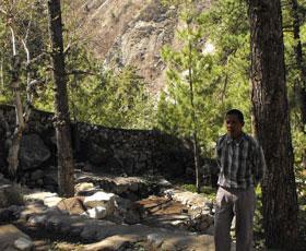 Gangotri Conservation