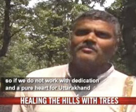 Healing the hills with trees